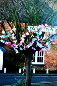 Sunday wishing tree