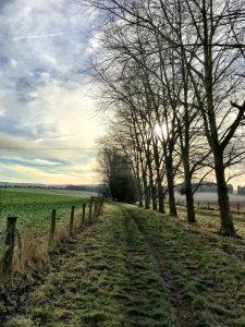 Silent Sunday: a year of Sundays 2017