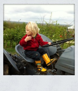 Small boy riding a tractor